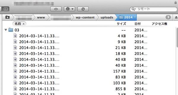 Wordpress import 08