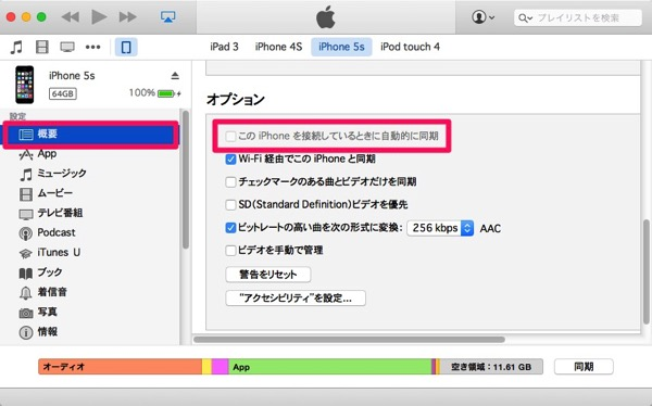 ITunes Option