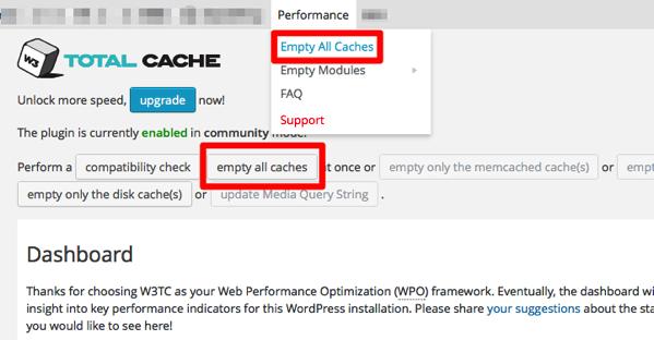 W3 total cache clear cache