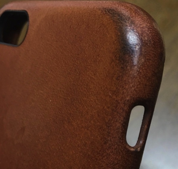 Saddle Brown after four months upper right